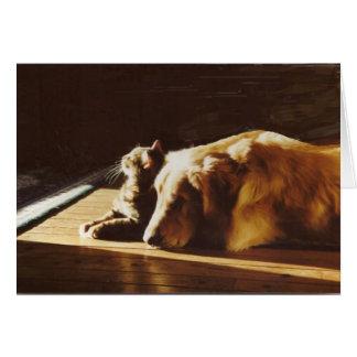 Golden Retriever Best Buddies Card