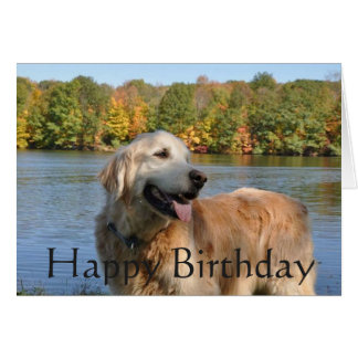 Golden Retriever Birthday At The Lake Card