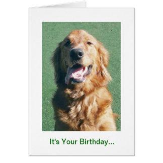 Golden Retriever Birthday Card, Golden Years Card