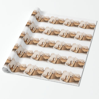 Golden Retriever Box of Fun Wrapping Paper