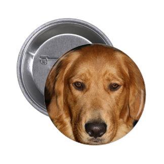 Golden retriever 2 inch round button