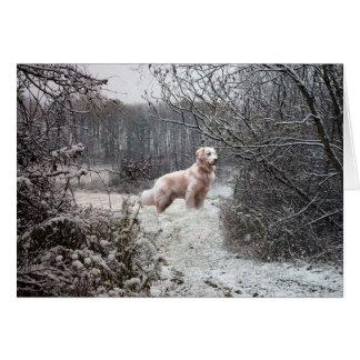 Golden Retriever Card Snow