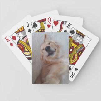 Golden Retriever Cards