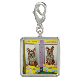 Golden Retriever Chocolate Rabbits in Boxes Charms
