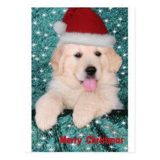 Golden Retriever Christmas Puppy Postcard