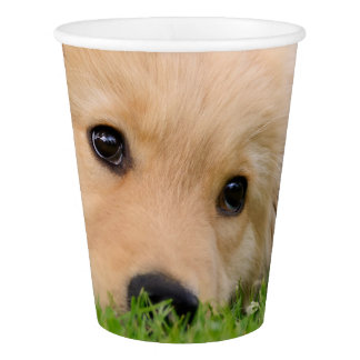 Golden Retriever Cute Puppy Dreaming, Party Paper Cup