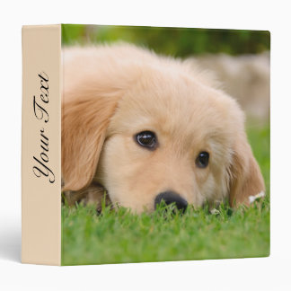 Golden Retriever Cute Puppy Dreams Dog Head Photo 3 Ring Binder
