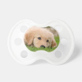 Golden Retriever Cute Puppy Dreams Dog Head Photo Pacifier