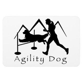 Golden retriever d'aimant de chien d'agilité magnets en rectangle