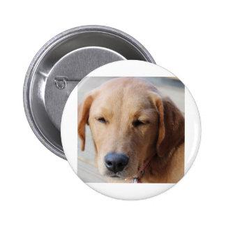 Golden Retriever Dog #2 Pinback Buttons