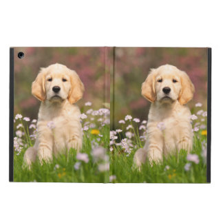 Golden Retriever Dog Cute Goldie Puppy, hard iPad Air Case