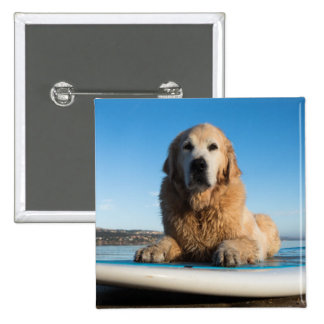 Golden Retriever Dog  Laying On A Paddle Board 2 Inch Square Button