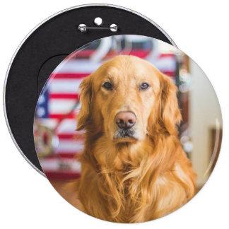 Golden Retriever dog portrait 6 Inch Round Button