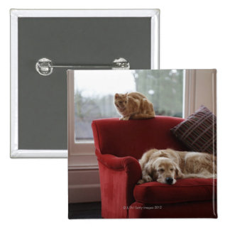 Golden retriever dog with ginger tabby cat 2 inch square button