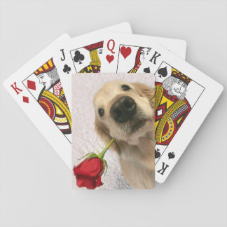 Golden Retriever Dog With Red Rose Playing Cards