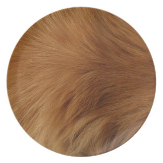 Golden Retriever Fur Plate