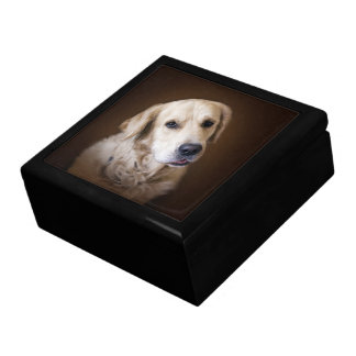 Golden retriever gift box