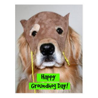 Golden Retriever Groundhog Day Postcard