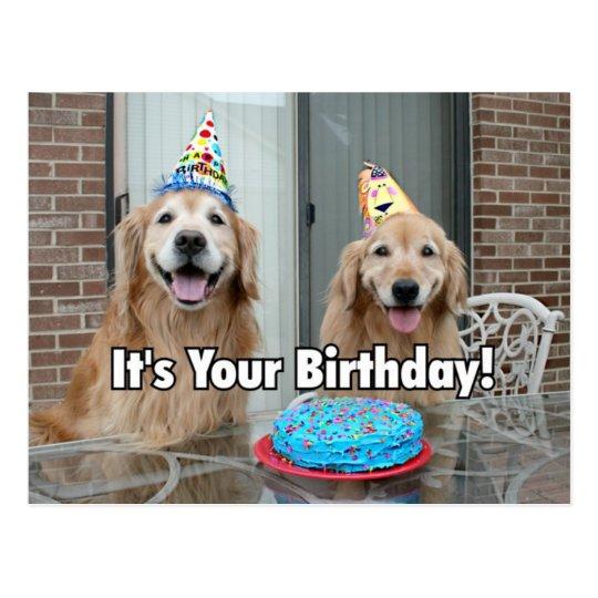 Magnificent Golden Retriever Happy Birthday Cake Postcard Zazzle Ca Funny Birthday Cards Online Alyptdamsfinfo