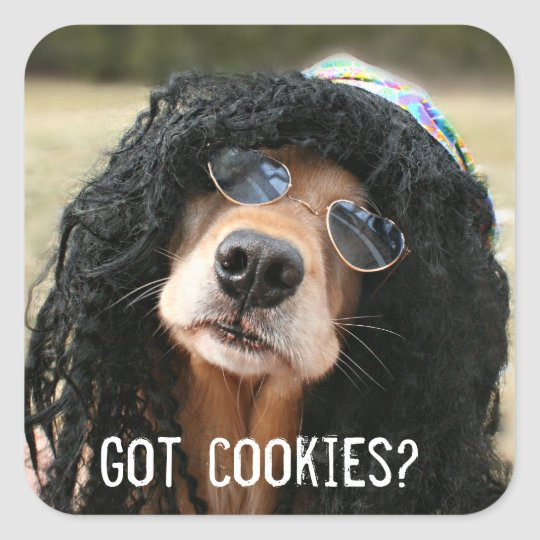 Golden Retriever Hippie Got Cookies Square Sticker