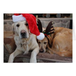 Golden Retriever Holiday Card