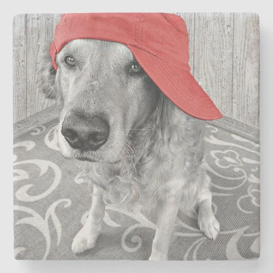 golden retriever in baseball cap stone coaster