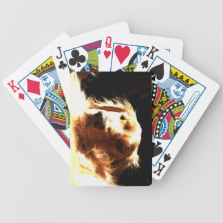 Golden Retriever In Sunlight Bicycle Playing Cards