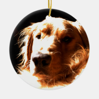 Golden Retriever In Sunlight Ceramic Ornament