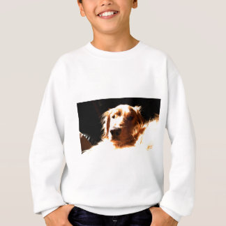 Golden Retriever In Sunlight Sweatshirt