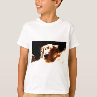 Golden Retriever In Sunlight T-Shirt