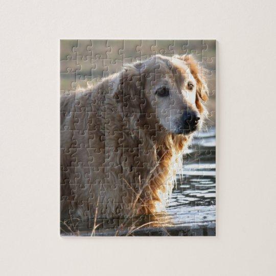 Golden Retriever in Water Jigsaw Puzzle