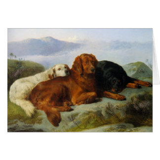 Golden Retriever, Irish and Gordon Setter Notecard