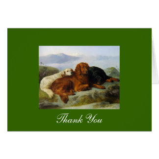 Golden Retriever, Irish & Gordon Setter Thank You Card