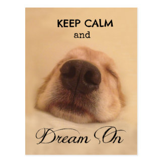 Golden Retriever Keep Calm Dream On Postcard