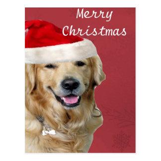 Golden Retriever Merry Christmas Postcard
