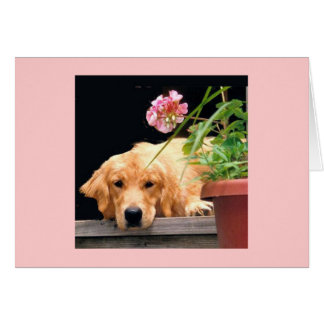 Golden Retriever My Heart Is Yours Card