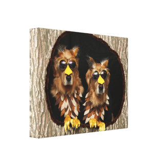 Golden Retriever Owls in Tree Stumps Canvas Print