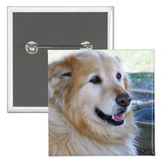 Golden Retriever Photo Buttons