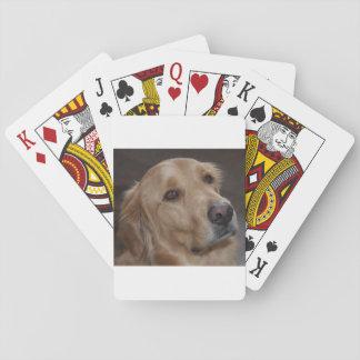 Golden Retriever Playing Cards