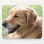 Golden Retriever Pup Mouse Pad