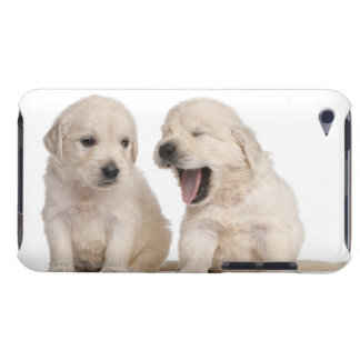 Golden Retriever puppies (4 weeks old) iPod Touch Covers