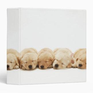 Golden Retriever Puppies Binders