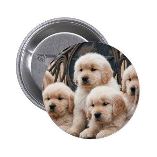 Golden Retriever Puppies 2 Inch Round Button