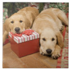 Golden retriever puppies with christmas gift tile