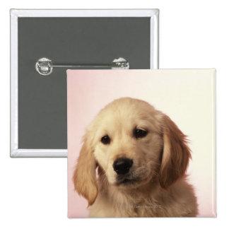 Golden Retriever Puppy 2 Inch Square Button