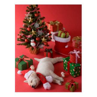 Golden Retriever Puppy and Christmas Postcard