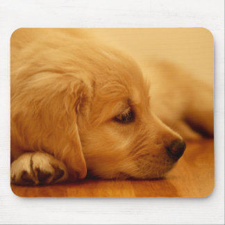 Golden Retriever Puppy Antoine Melancholy I Mouse Pad