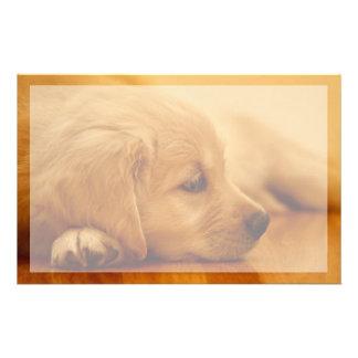 Golden Retriever Puppy Antoine Melancholy I Stationery