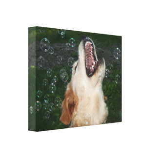 Golden Retriever Puppy Catching Bubbles Canvas Print