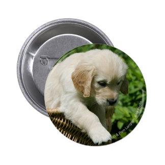 Golden Retriever Puppy in Basket 2 Inch Round Button